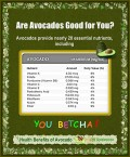 ARE AVOCADOS GOOD FOR YOU?  Health Benefits of Avocado
