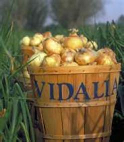 Vidalia Onion Cracker Spread