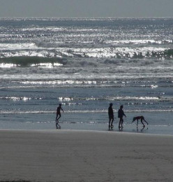 The beach at Westport, Washington
