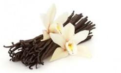 Easy Homemade Vanilla Extract