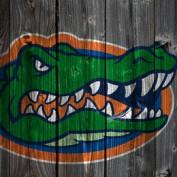 Drunken gator profile image