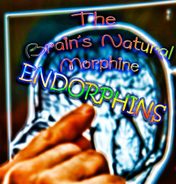 How Our Brains Manufacture Morphine-Like Chemicals Called Endorphins
