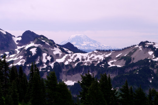 View of Mt Adams.