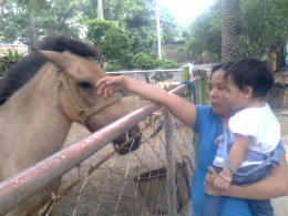 Yna's first encounter with a real horse.