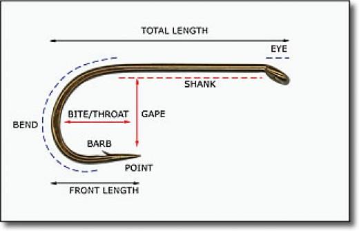 Taken from:  http://www.flatlandflyfishers.com/Flyfishing101/Hooks.htm