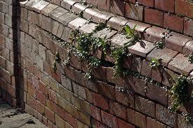 Bulging Bricks