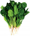Health Benefits Spinach Nutritional Values, Spinach Culinary Uses