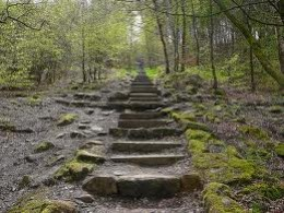 Steps to the Chevin Forest Park