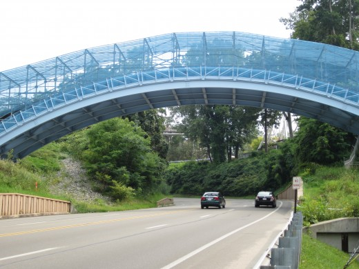 Ravine Flyer II 165 foot arched bridge over Peninsula Drive (SR 832).  Regulatory approval required the blue mesh covering to decrease the distraction to the drivers on the roadway below.