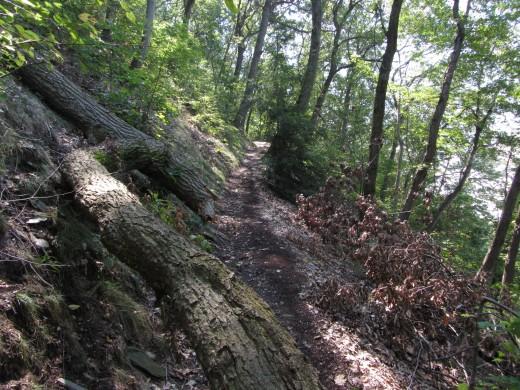 Turkey Hill Trail along the Susquehanna River