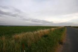 Laneside view along the battlefield site