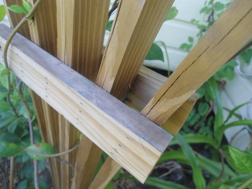 Attach a brace on the front and back side of the fan portion of the trellis.