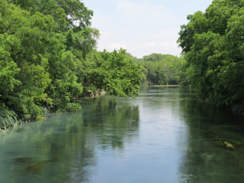 The San Marcos River in San Marcos, Texas