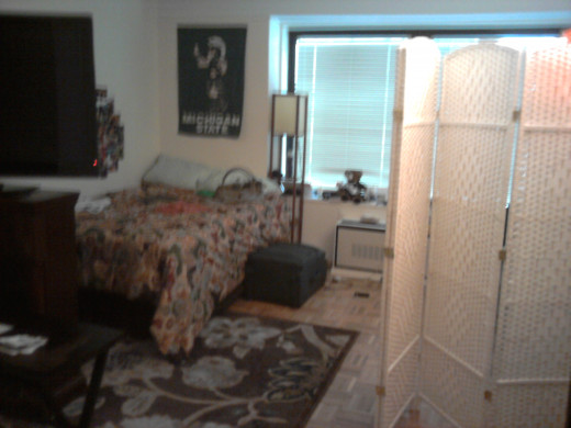 Hiding bed with a room divider in a studio apartment