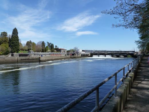 A view of the Ballard Locks.