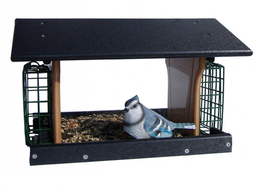 Deluxe Suet and Bird Feeder