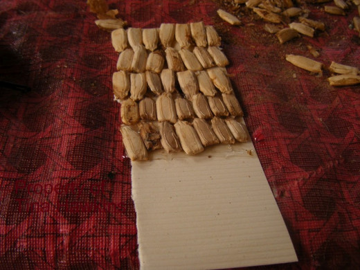 Place the gourd seeds on the paper and glue them, being sure to cover the whole paper.  Spray with adhesive when done