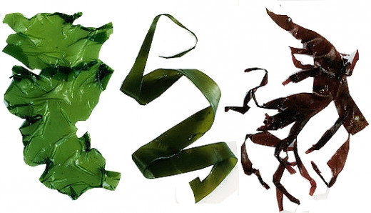 Seaweed is increasingly being used more widely because of its outstanding nutrition facts and health benefits.