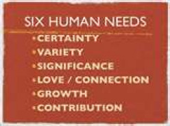 The 6 Basic Human Needs