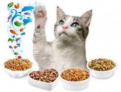 Why isn't there mouse flavored cat food?