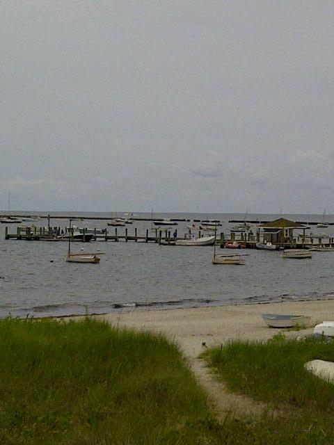 Scenic Bay Side