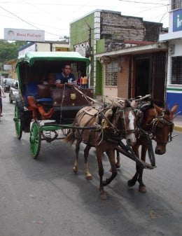 Take an old-fashioned taxi to make a quick tour of the town.  Horse drawn carts are also used to carry around building materials and other heavy items.
