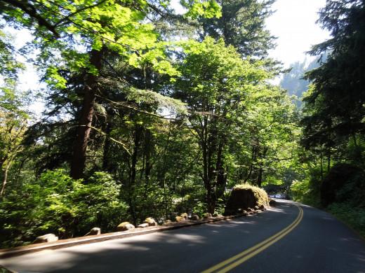 Road to Multnomah Falls in Oregon