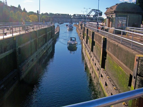 Boats entering the Ballard Locks