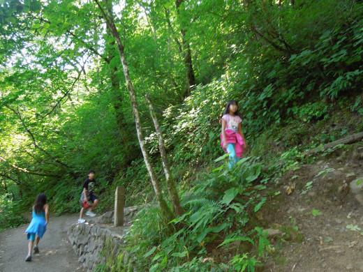 Kids Walking in Multnomah Falls Walking Trail