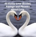 40 Funny Love Quotes, Sayings and Phrases about Love