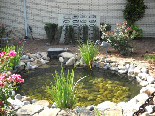 Entrance pond