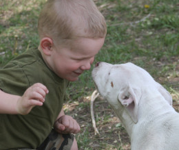 This little boy isn't afraid of the puppy who is almost as big as he is. You can stop being afraid as well by following these three steps.