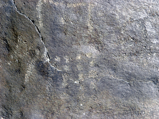 A petroglyph carved into a smooth rock centuries ago.