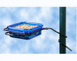 Pole Mounted Mealworm Feeder.