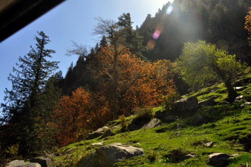 The scenes on the way to Gangotri are so beautiful that they can put you into a trance...