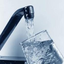 Water is Vital!