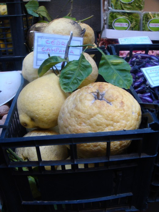 Lemons of Sorrento