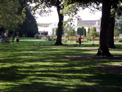 A very small section of the park and rose garden next to the zoo