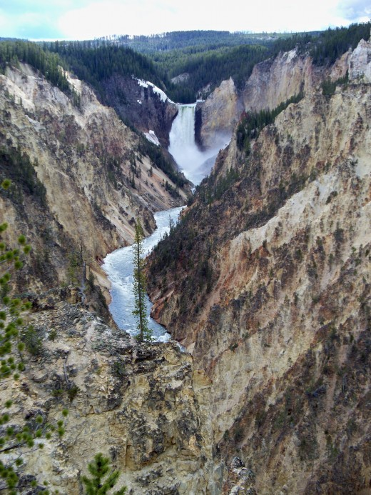 View from Artist Point looking towards Lower Yellowstone Falls through the Grand Canyon of Yellowstone