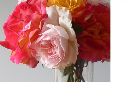 A beautiful vase of fresh cut flowers add a special touch to your Guest Room.