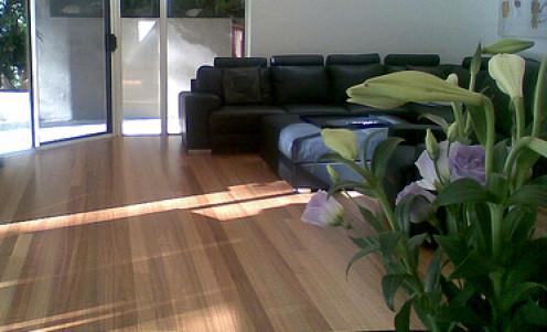 Choose wood laminate or cork/vinyl over wood floors for sheer durability.