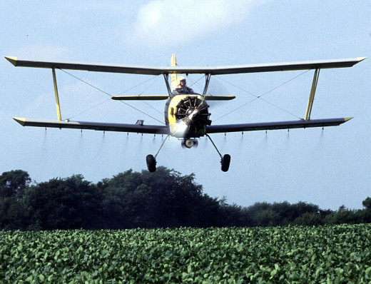 A plane crop dusting a commercial field