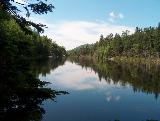 Lost Pond is one of the quiet areas located near the Pinkham Notch Visitor Center