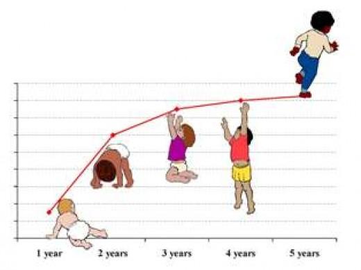 Baby growth & development chart