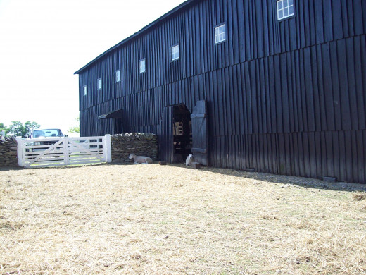 Active Barn at Shakertwon