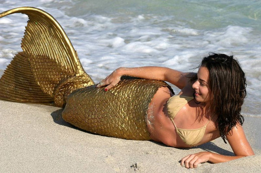 mermaid elite collection adult