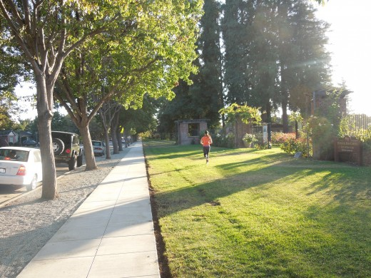 Free Street Parking by Municipal Rose Garden in San Jose CA