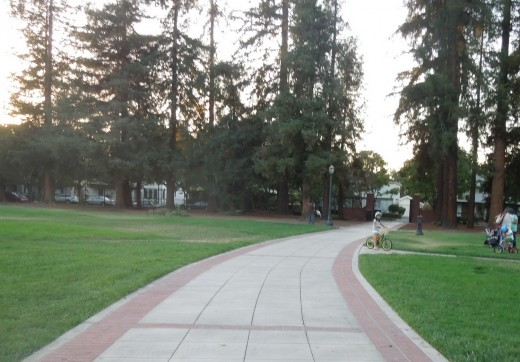A Kid Biking at Municipal Rose Garden in San Jose CA