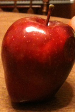 15 Ways You Can Help Your Children Have Fun With Appples This Time of Year