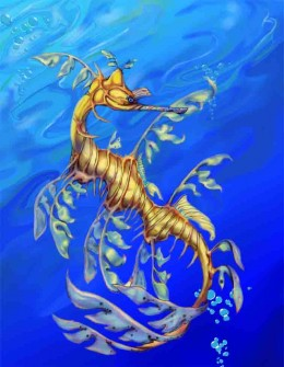 Known scientifically as the Phycodurus eques this colorful relative of the Sea Horse lives in the Southern waters off the coast of Australia.